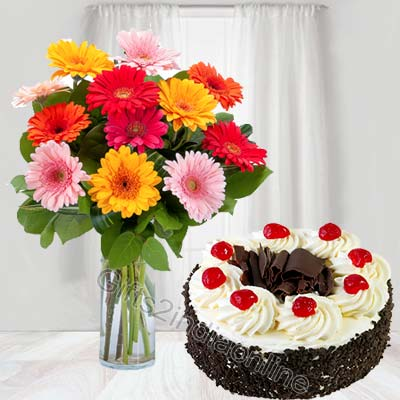 12 Mixed Gerberas with Black Forest Cake