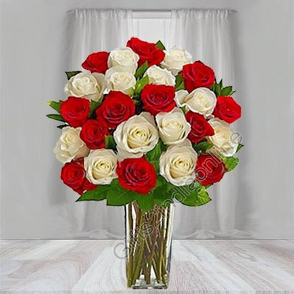 12 Red Roses and 12 White Roses