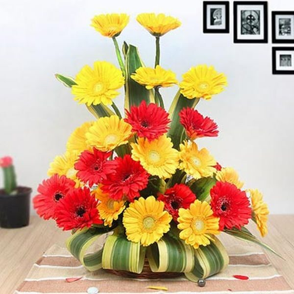 24 Red and Yellow Gerberas