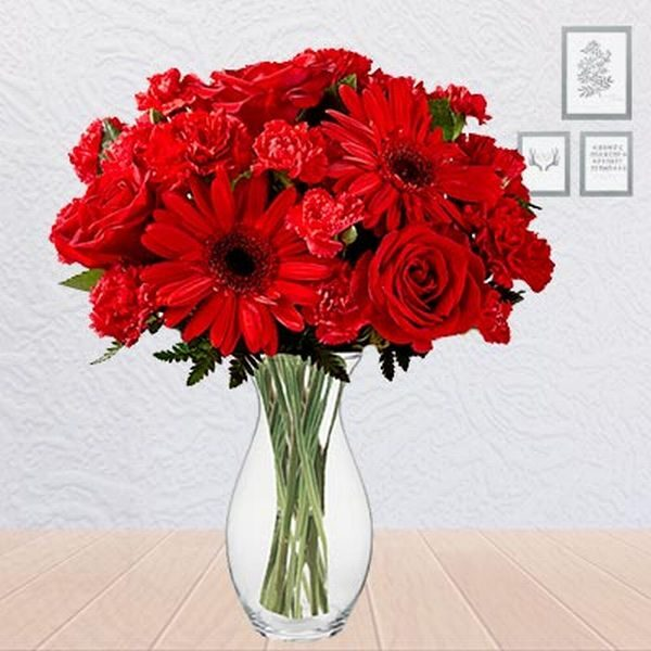 12 Red-colored Carnations and 6 Red Gerbera Flowers