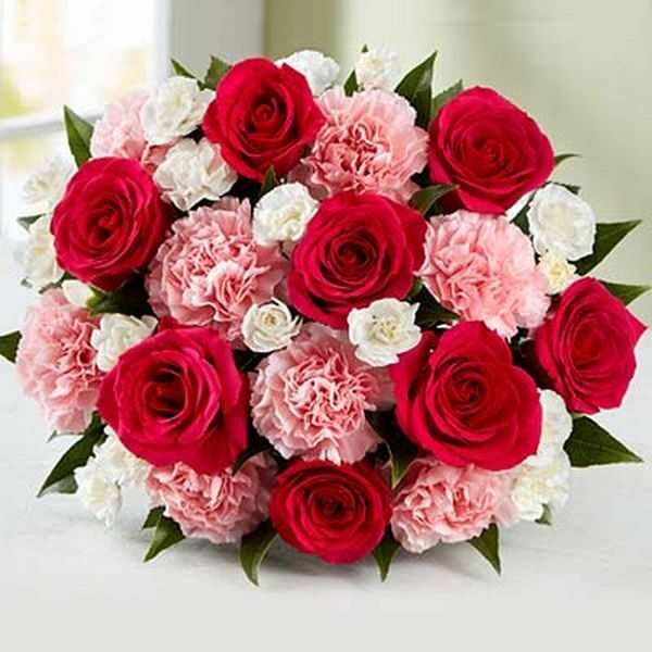 8 Red Roses, 8 pink carnations and 8 white carnation